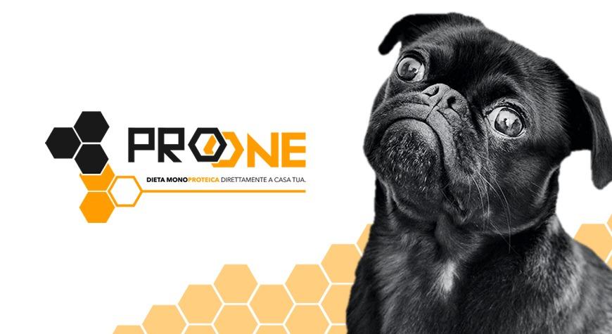 Crocchette per cani | La Scelta ProONE